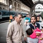 Magyarok is telefonos alkalmazást fejlesztenek a menekülteknek