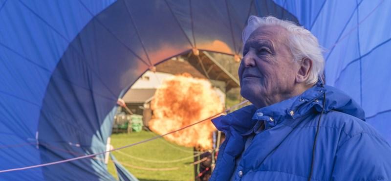 Most szombaton érdemes lesz a Spektrumra kapcsolni: jön David Attenborough várva várt sorozata