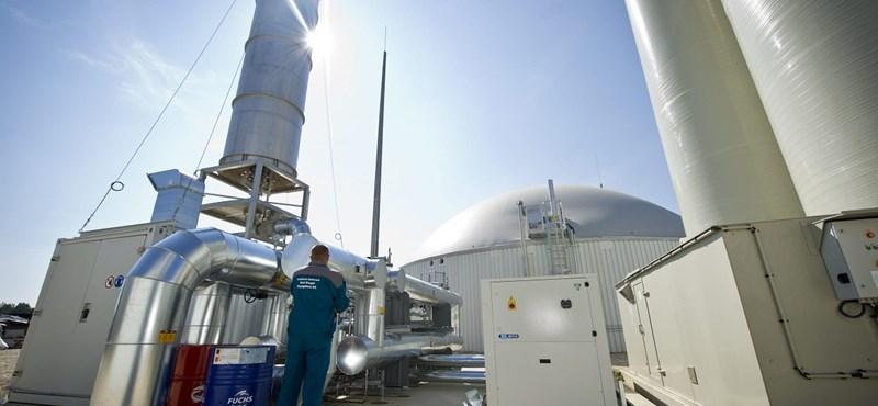 Jövő ősztől már termelhet a pécsi biomassza-erőmű