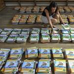 Kínos hibáktól hemzsegnek a tankönyvek - nemzeti sporttá vált a bakivadászat