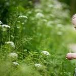 7 ok, amiért manipulálhat a kisgyerek