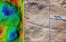 120 ezer éves emberi lábnyomokat találtak Szaúd-Arábiában