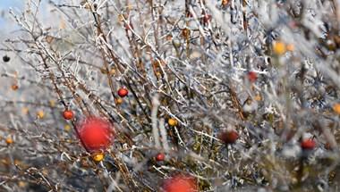 231 brit kocsmában betiltották az egyik legnagyobb karácsonyi slágert