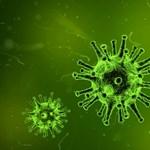 Rekord: 916 új fertőzöttnél mutatták ki a koronavírust Magyarországon