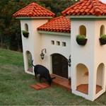 10 luxus kutyaház dizájn - nem túlzás ez?
