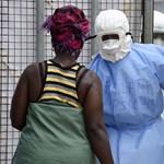 Az erdőirtás hozza ránk az ebolát és a többi szörnyű betegséget