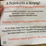 A plagizáló bíró elnöki kinevezése miatt szerveznek sztrájkot