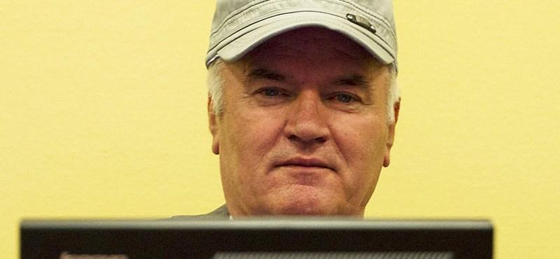 Két részre osztják a Ratko Mladics elleni vádakat