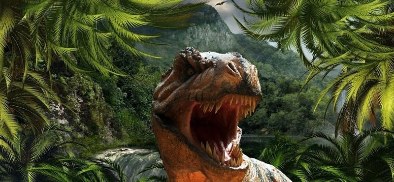 A valaha élt legnagyobb élőlény maradványait találhatták meg