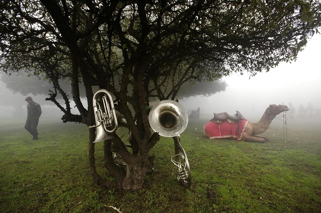 a zene világnapja nagyítás - Delhi, India - félkatonai alakulat hangszerei várakoznak a reggeli ködben a Köztársaság Napja egyik próbája előtt