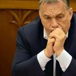 Orbán Viktor az egyetlen - mondta az olasz zenetanár