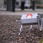 Ugrik, szaltózik, épp csak nem ugat: mókás robotkutyát fejlesztettek