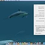 Rendkívül látványos animált háttérképek, ingyen: delfinek, órák, földgömb [videó]