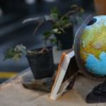 Az embereket megbénítja a személyes felelősség. Mi a kulcsa a hatékony klímavédelemnek?