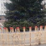 Mintha mi sem történt volna, visszatértek a Kossuth téri karácsonyfa köré a szánkók