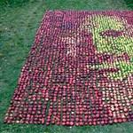 3750 almából rakták ki Steve Jobs arcképét