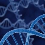 Ön odaadná a DNS-ét az államnak?