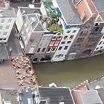 Hajléktalantúrák Utrechtben