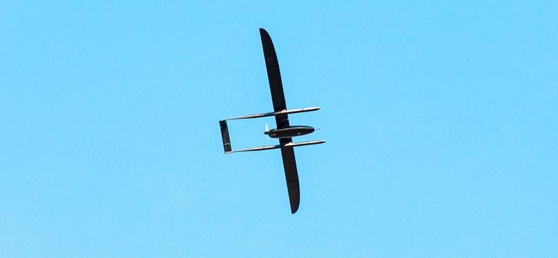 Komplett madárkatasztrófát sikerült okoznia két drónozó turistának egy amerikai rezervátumban