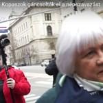 Elhatárolódtak a herceghalmi képviselők Erdősiné beadványától