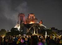 1300 normadiai tölgyet ajánlottak fel a Notre-Dame új gerendázatához