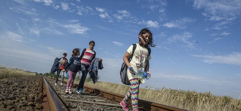 Már este megindulhat a menekültáradat Röszkére