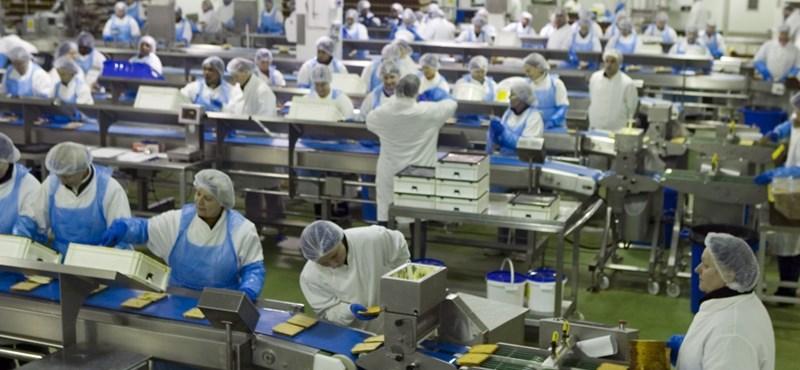 Így lesz a magyar közmunkásból 300 ezret kereső brit szendvicsgyáros