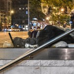 Közmunkást faragna a hajléktalanokból az Orbán-kormány