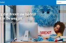 Brexit-szörnnyel készülnek a hollandok a brit kilépésre