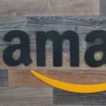 Az Amazon lett a világ második ezermilliárd dollárt érő cége