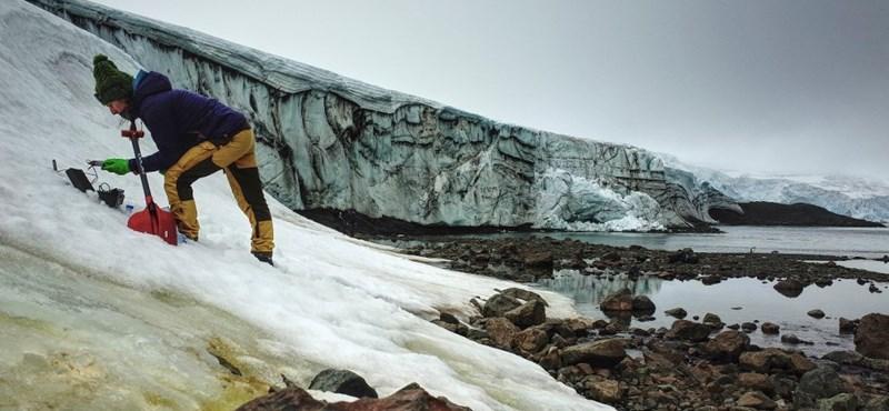 Az űrből vizsgálták a szén-dioxidot is elnyelő antarktiszi algavirágzást