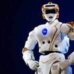 Nem emberi lény sétált be az amerikai egyetemre: a NASA-nak van köze a dologhoz