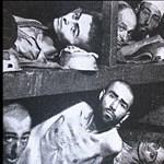 """""""Úgynevezett holokauszt"""" - Dúró Dóra szerint a világ"""