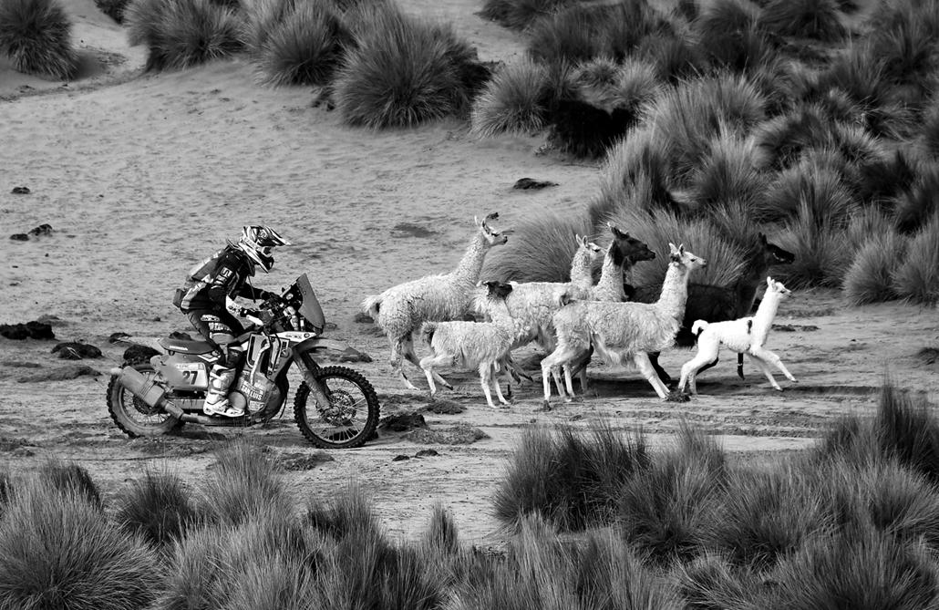 afp.18.01.06-20 - Dakar 2018 dakar rally Argentína Dél-Amerika Fekete-Fehér
