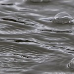 Vízbe fulladt egy nő Pest megyében