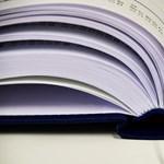 Felvételi: milyen dokumentumokat kell feltöltenetek? Itt a válasz