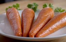 Zöldséget imitáló hússal reagál a műhústrendre egy amerikai gyorsétterem