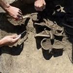 Elképesztő erejük volt a neolitikumban élő nőknek