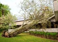 Extrém szélsebességű viharokat hoz a klímaváltozás Magyarországon