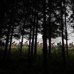 Újabb három hét hajtás: Tour de France 2012 - Nagyítás-fotógaléria
