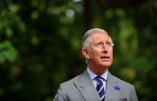 Károly herceg: Idén sok családban, az enyémben is üresen marad egy szék az ünnepi asztalnál