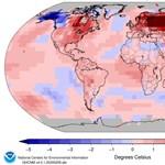 Beindította a fajok vándorlását a globális felmelegedés Amerikában, és ez nem jelent jót