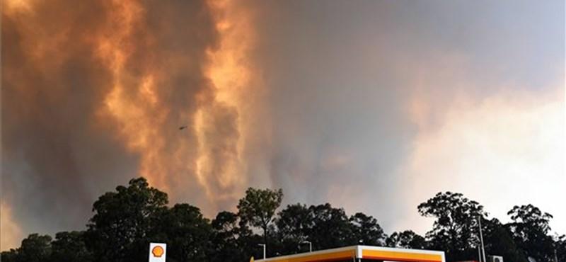 Már Sydney-t fenyegeti a bozóttűz, szükségállapotot rendeltek el