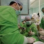 Egyetemek és főiskolák rangsora: a legjobb orvosi és egészségtudományi karok