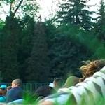 Füves piknik a Margitszigeten - videó