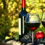Nem ért a borokhoz, de szeretne jól választani? Itt a digitális borlap