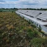 Elárverezik a szigetszentmiklósi stadion-torzót