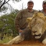 Megnyílt az adakozók pénztárcája az értelmetlen oroszlángyilkolás után