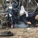 A Migration Aid pártot alapít, hogy ne kelljen fizetnie a bevándorlási különadót
