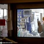 A koronavírusos Bányai Gábort már Szegeden kezelik, családja szerint jobban van
